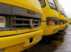 Перевірка перевізників Закарпаття: знайшли 433 порушення, допущених водіями