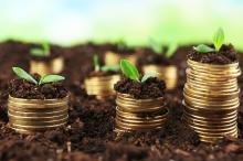 Яка відповідальність передбачена за несплату або несвоєчасну сплату плати за землю ФО