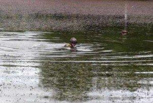 В Полтаві втопився 27-річний закарпатець
