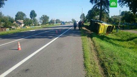 Водій заснув за кермом: Туристичний автобус з українцями перекинувся в Білорусі (ФОТО)