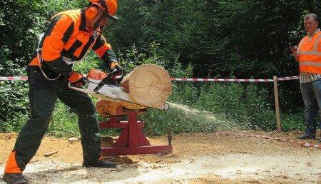 Вальник лісу – одна з десяти найнебезпечніших професій світу (ВІДЕО)