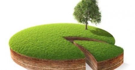 За фактом незаконної передачі 1,2 га землі в курортному селі Шаян прокуратура розпочала кримінальне провадження