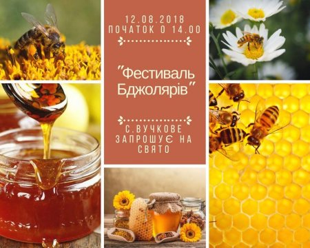 Міжгірщина запрошує на фестиваль бджолярів (АФІША)
