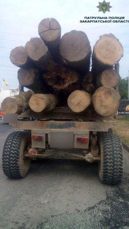 Патрульні виявили  незаконні перевезення лісу (ФОТО)