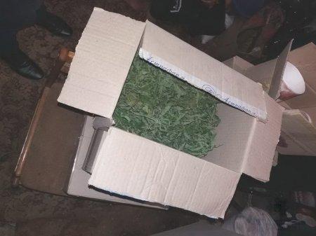 У жителя Іршавщини правоохоронці вилучили марихуану
