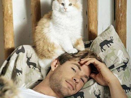Магія кішок- ці тварини в будинку особливо корисні для чоловіків