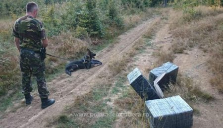 Румунські прикордонники затримали закарпатського контрабандиста(відео)