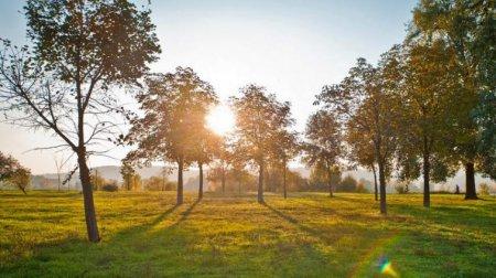 Спека і грози: Синоптики розповіли, яких сюрпризів слід очікувати від погоди 25 серпня
