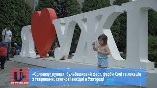 «Солодка» вулиця, бульбашковий фест, фарби Холі та локація з тваринами: святкові вихідні в Ужгороді (ВІДЕО)