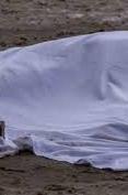 На Закарпатті знайшли мертву дівчинку без внутрішніх органів: Чутки?