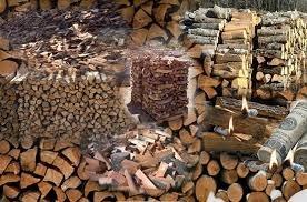 Зима не за горами: Закарпатці заготовлють дрова легально (відео)