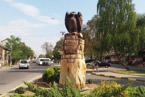Орел «приземлився» у Тячеві (ФОТО)