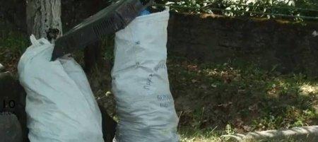 Сміття в Ключарках на Мукачівщині не вивозять більше місяця (ВІДЕО)