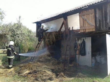 Закарпатська область: впродовж вихідних днів підрозділи УДСНС ліквідували 6 пожеж у господарських будівлях (ФОТО)