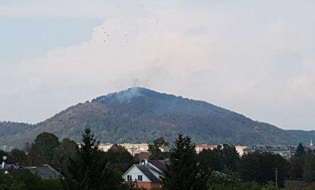 Горіла гора Ловачка. Викликали мукачівських пожежних (ФОТО)
