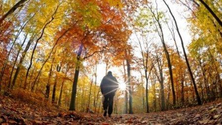 Стане тепліше: Синоптики розповіли, якої погоди варто очікувати 17 вересня