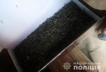 Берегівські поліцейські у місцевого чоловіка вилучили наркотики