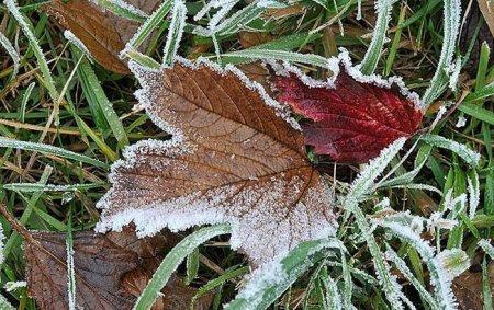 Дощі, заморозки і сніг: синоптики розповіли про різку зміну погоди