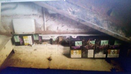 На Закарпатті 76-річний іноземець втратив авто через невдалу спробу тютюнової контрабанди
