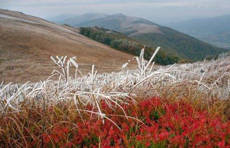 Йде холодна осінь: починаються заморозки, але на вихідних потеплішає (ВІДЕО)