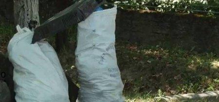"""У селі Ключарки біда- відповідальні особи """"Нічого не бачать"""", а сміття тільки наростає (ВІДЕО)"""
