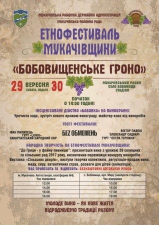 Вихідні на Закарпатті: Перечинщина запрошує на лемківський фестиваль, Мукачівщина – на «Бобовищенське гроно»