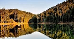 Погодні умови на території Закарпатської області: вихідні будуть теплими та без дощу