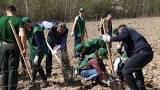 Щорічна акція «Майбутнє лісу у твоїх руках» днями пройшла на Берегівщині