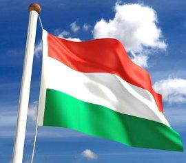 Україна та Угорщина проводитимуть консультації щодо видачі угорських паспортів на Закарпатті
