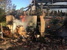 Рятувальники ліквідували пожежі в надвірних спорудах