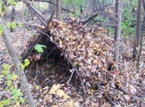 Пішли по гриби і замерзли: в лісі у власноруч збудованому шалаші знайшли тіла матері та сина