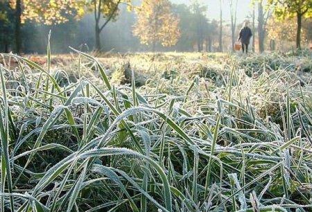 Синоптики попередили про заморозки
