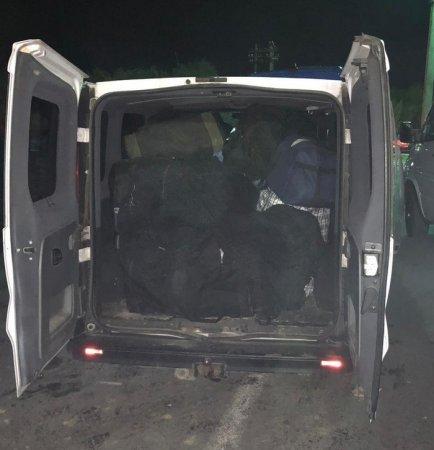 Контрабанда на $1 млн: На Закарпатті перехопили понад тонну бурштину, що прямував до країн ЄС