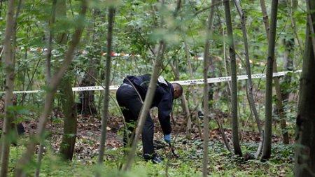 На Закарпатті в лісі знайшли скелет людини