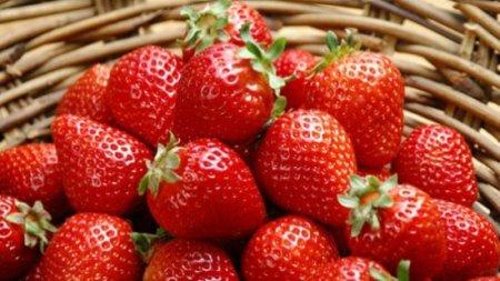 Знайдена ягода, яка призупинить ваше старіння