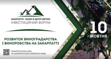 В Ужгороді вчетверте відбудеться міжнародний інвестиційний форум «Закарпаття – бізнес в центрі Європи» (АНОНС)