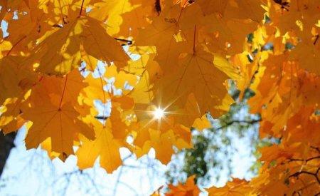 Бабине літо – у розпалі: Синоптики дали прогноз на 11 жовтня