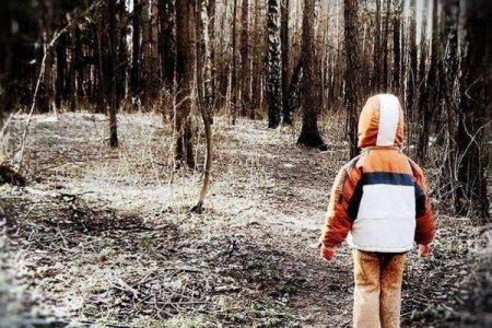 У лісі на Мукачівщині кілька годин шукали 2-річну дівчинку