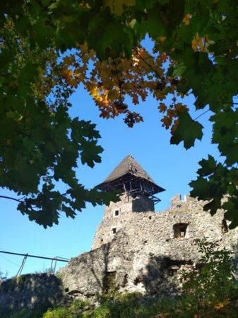 Порядок на території Невицького замку працівниками туризму