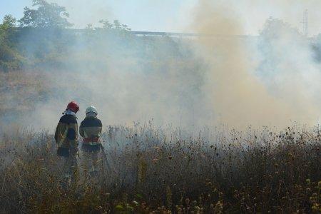 Рятувальники Закарпаття закликають не палити сухостій та опале листя