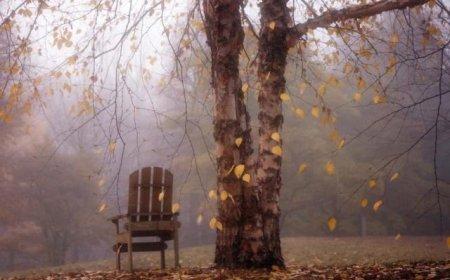 Суне холодна осінь: Синоптики дали прогноз на 19 жовтня