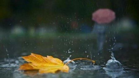 Сьогодні на Закарпатті повсюдно дощитиме, місцями мокрий сніг