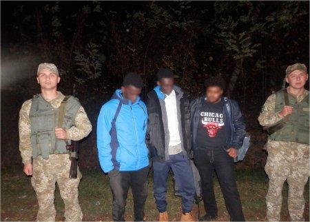 Неподалік кордону з Угорщиною на Закарпатті затримали трьох нелегалів із Африки