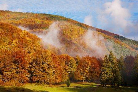 Природа «передумала» Закарпаття очікує ще тиждень теплої осінньої погоди