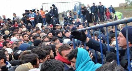 Зустрічайте! Україна прийме 20 тисяч біженців з Німеччини, – ЗМІ