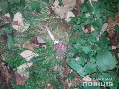 На виноградівщині син побив батька дерев'яною палицею та ножицями: чоловік в реанімації