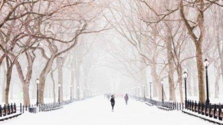 Зима буде аномально теплою: метеоролог дала прогноз на грудень і січень