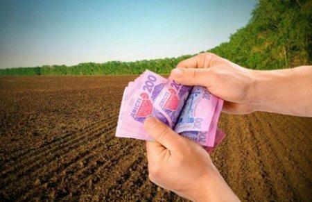 З початку року на Закарпатті від продажу землі до бюджетів усіх рівнів надійшло понад 84 мільйони гривень