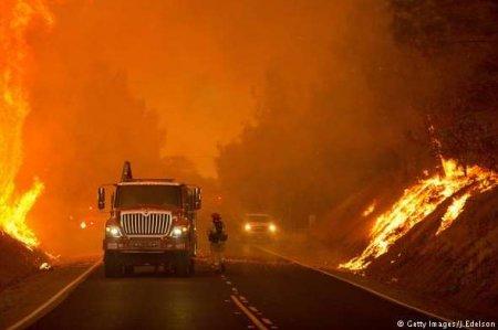 Вбивчі пожежі Каліфорнії: 83 загиблих, понад 560 зниклих (ФОТО)