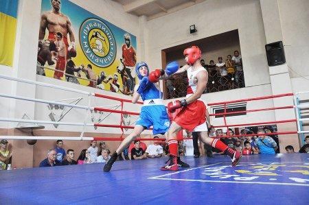 Турнір з боксу серед ромських дітей пройшов у Мукачеві (ВІДЕО)